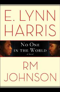 New E. Lynn Harris Book